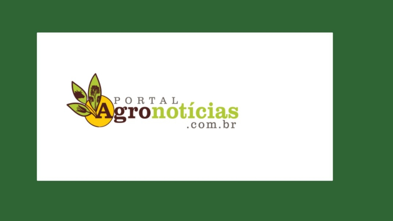 portal-agronoticias-mahogany-roraima-iplant-forest